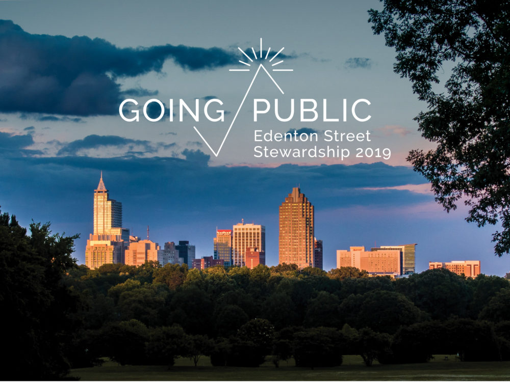 Going Public (The Gathering)